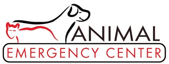 Animal Emergency Center Website Refresh