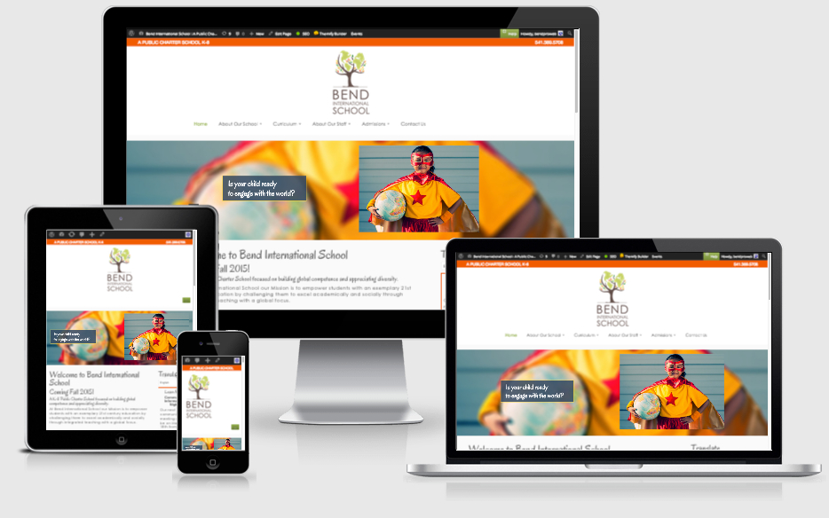 Responsive website views BIS